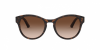 משקפי שמש של דולצ'ה וגבאנה |Dolce & Gabbana Sunglasses |DG4376 502/13-0